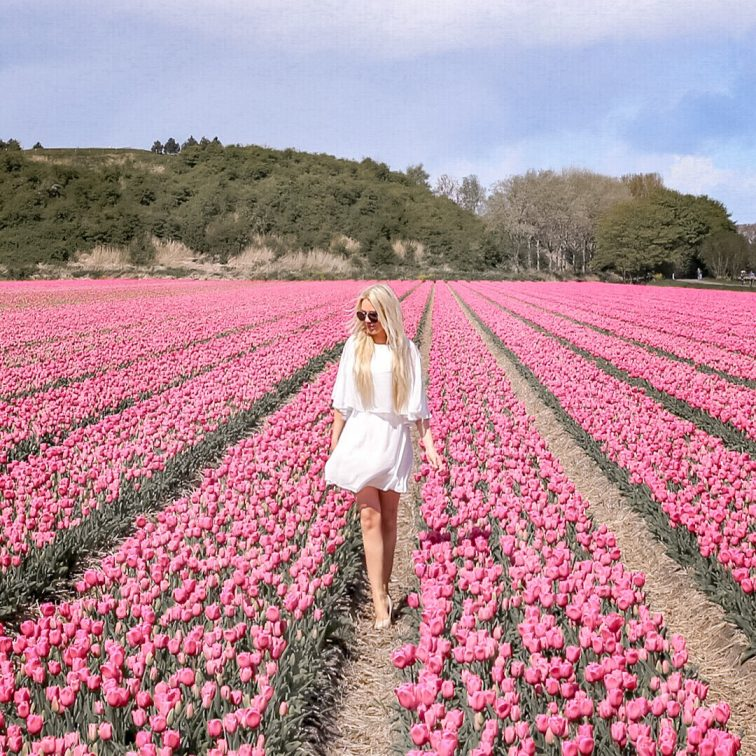 Walking through flower field